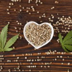 Hemp seeds with marijuana leaves: Phytanna History of Hemp & Cannabis Blog