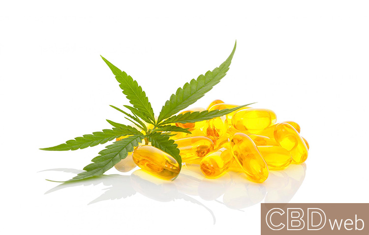 CBD oil for epilepsy